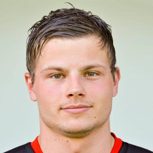 Fabian Halmdienst